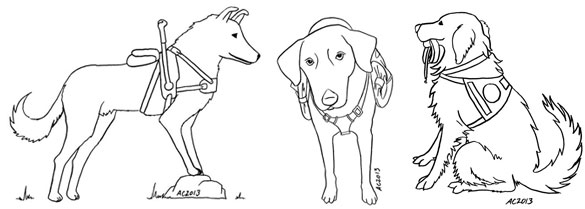 3 service dogs for a coloring book