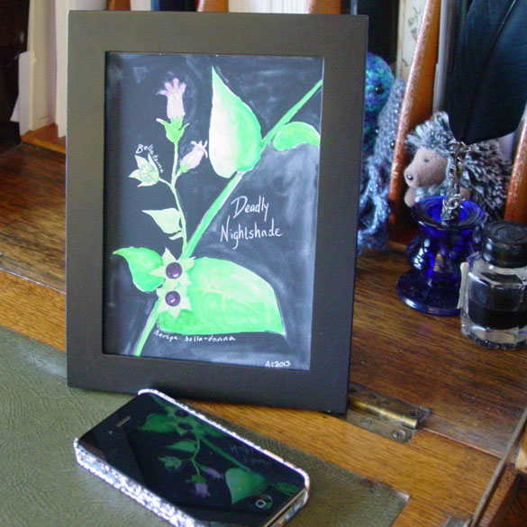 Deadly Nightshade, framed art by Amy Crook