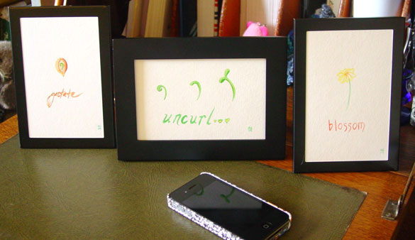 Gestate, Uncurl, Blossom; framed art by Amy Crook
