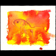 Goldfish, 10x8 watercolor on paper by Amy Crook