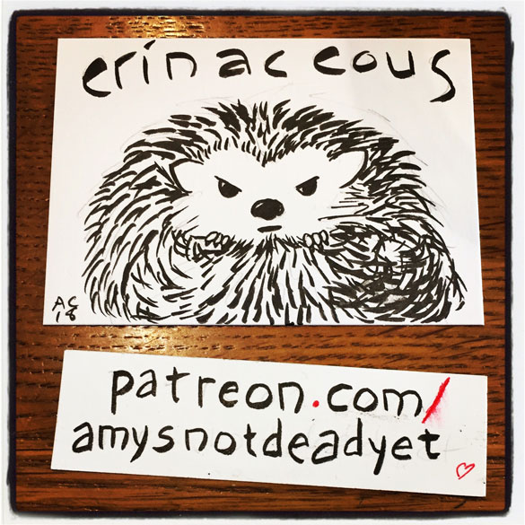 brush pen drawing of a grumpy hedgehog with the word erinaceous above