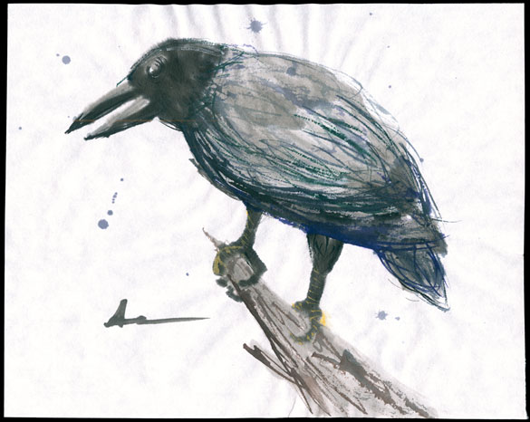 One for Sorrow by Amy Crook