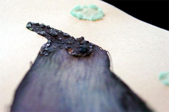 Rain Crow, detail 2, by Amy Crook