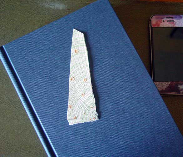 Salt Bookmark 5, with book, by Amy Crook