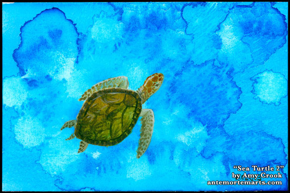 Sea Turtle 2 by Amy Crook