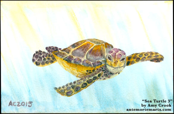Sea Turtle 3 by Amy Crook