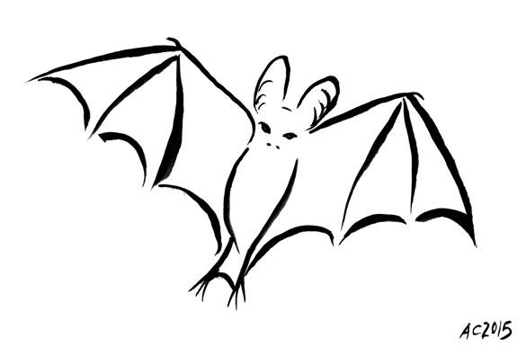 Vampire Bat by Amy Crook
