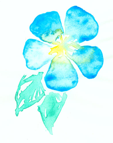 Blue Flower watercolor sketch by Amy Crook
