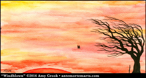 Windblown by Amy Crook