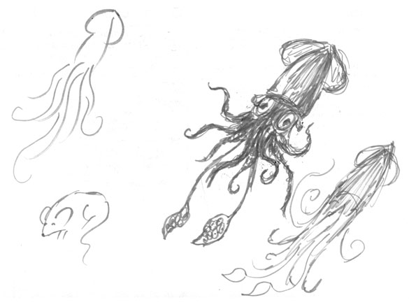 3 Squid and a Mouse, sketches by Amy Crook