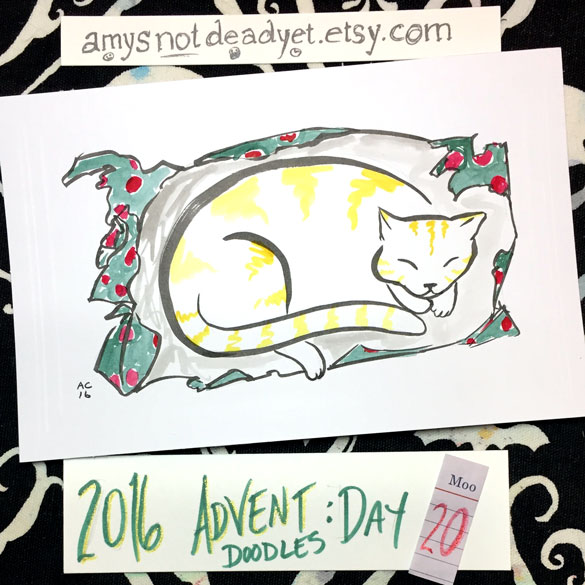 Advent 2016 day 20: Cat Wrap