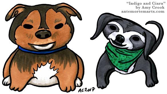 Indigo and Ciara, pet portraits by Amy Crook