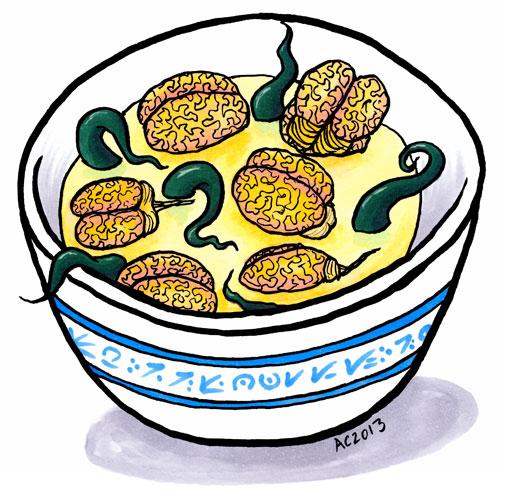 Brainton Soup by Amy Crook