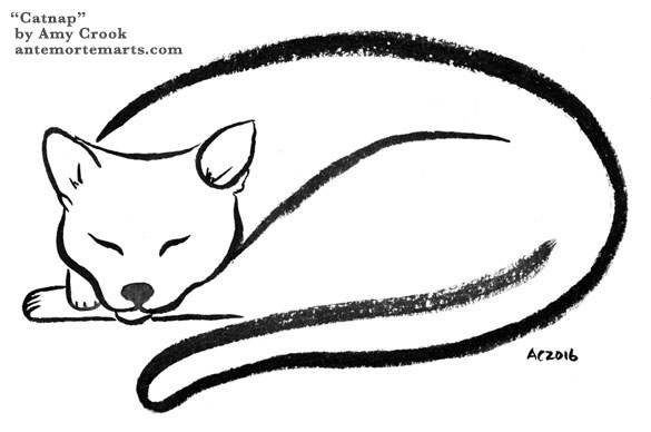 Catnap by Amy Crook