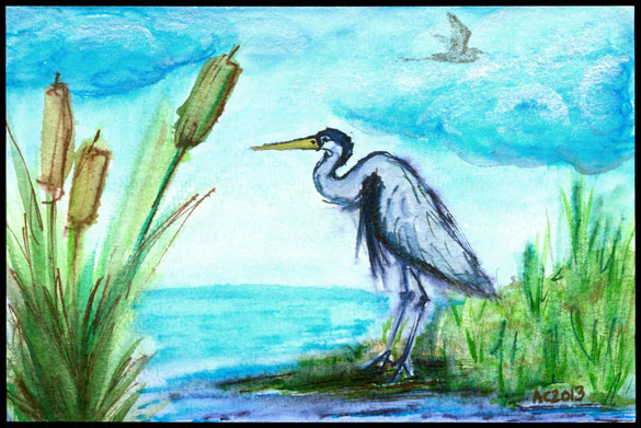 Birdwatching by Amy Crook