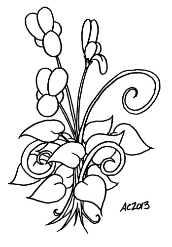 Fairy Flower, inks by Amy Crook