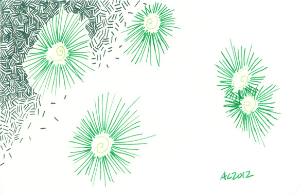 Green Sketch by Amy Crook
