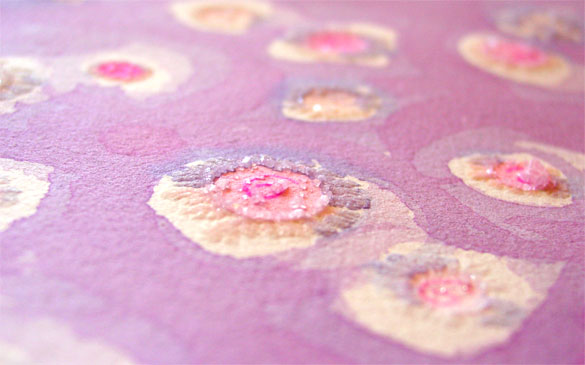 Hibiscus Pink, detail, by Amy Crook