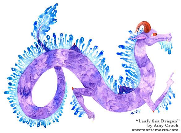 Leafy Sea Dragon by Amy Crook