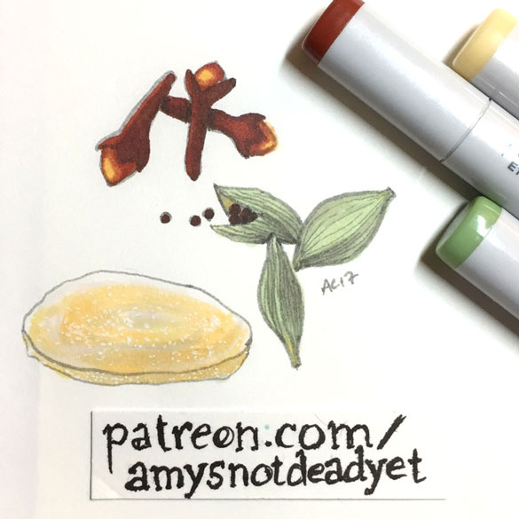 spices sketch by Amy Crook
