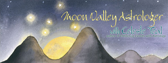 Moon Valley Astrologer header by Amy Crook