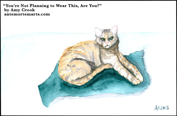 You're Not Planning to Wear This, Are You? by Amy Crook
