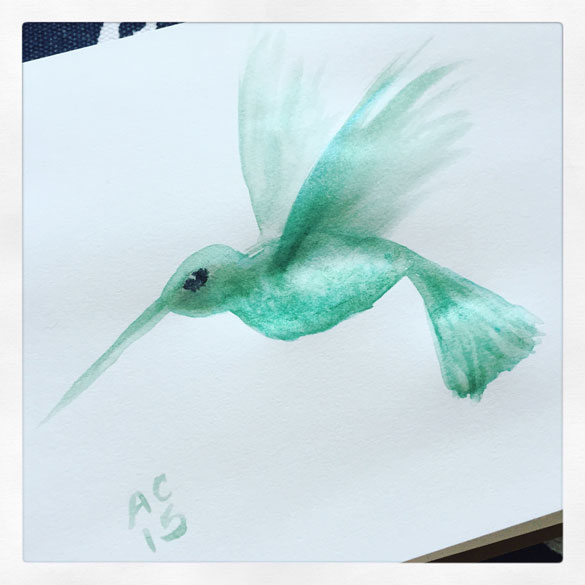 quick paint sketch of a hummingbird by Amy Crook, livepainted on Periscope