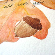 Plant This Acorn, detail, by Amy Crook