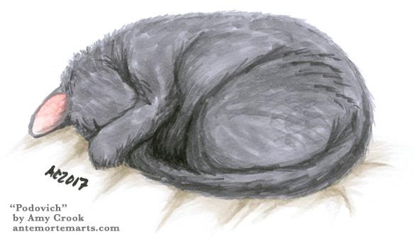 Podovich, catnap art by Amy Crook