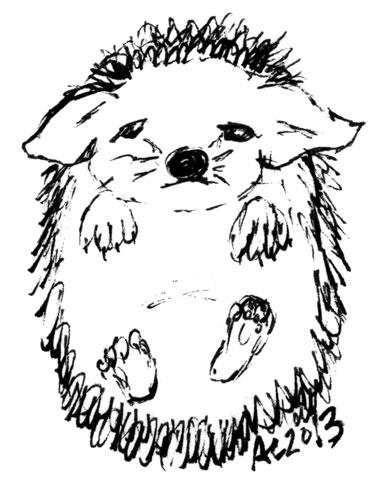 Sad Hedgehog sketch by Amy Crook