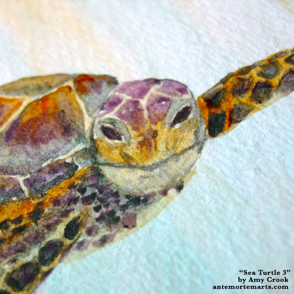 Sea Turtle 3, detail, by Amy Crook