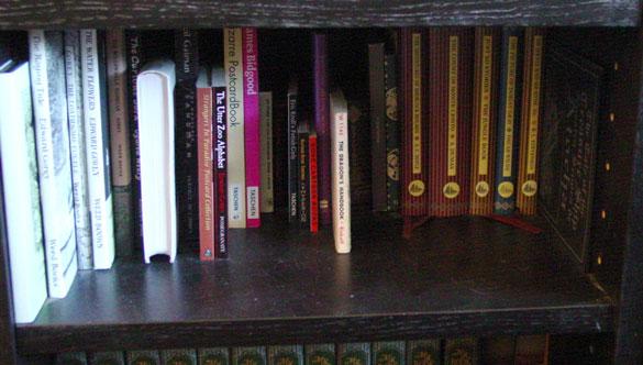 tiny books, short books, wee books