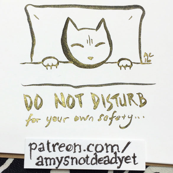 Sleeping Kitty by Amy Crook