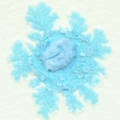 Snowflakes, detail, by Amy Crook