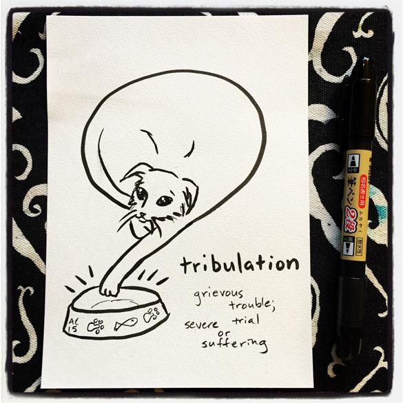 Word 9: Tribulation
